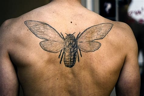 hipster tattoos for men tattoos for bug on back tattoomagz