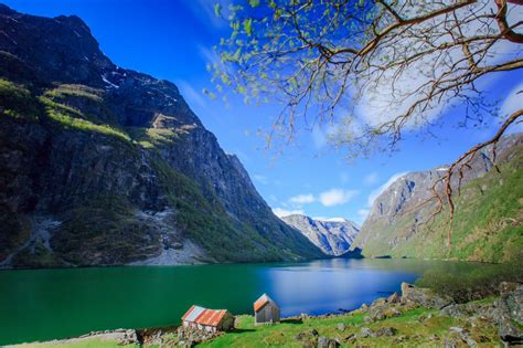 fjord travel norway norway in a nutshell 174 oslo bergen fjord travel norway