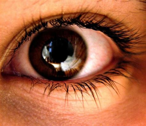 does eye color affect peripheral vision does eye color affect peripheral vision supplyme