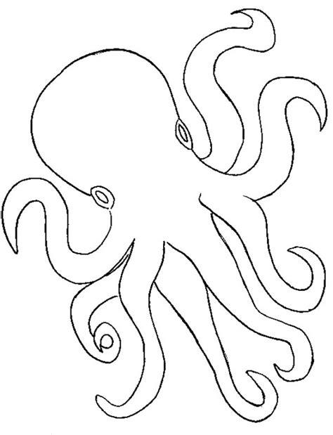 octopus outline coloring page color luna