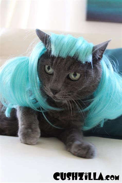 cat wig cat wig wig cushzilla aqua anime pet wig