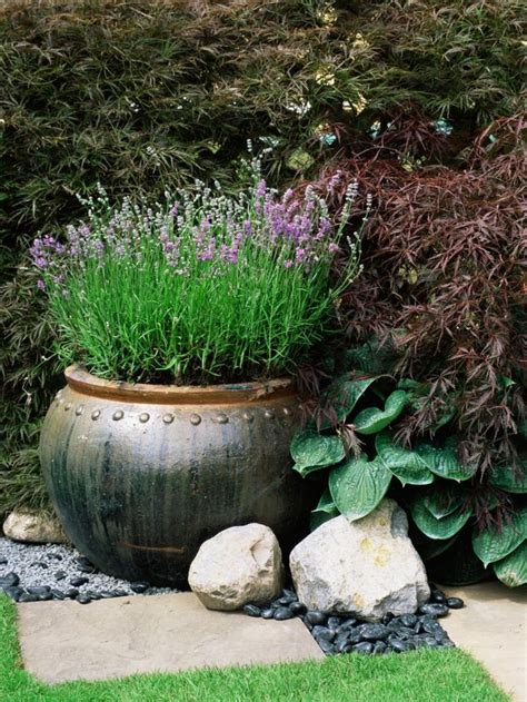 large garden pots and containers best 25 large garden pots ideas on large