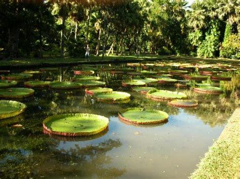 giardino botanico orari orto botanico