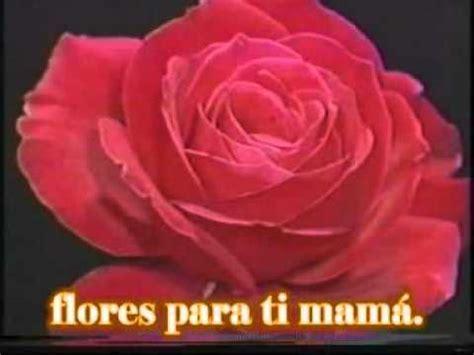 rosas para mama flores para ti mama juan daniel jaimes youtube