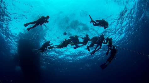 dive master become a professional padi divemaster in paradise