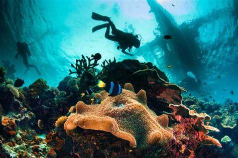 best dive spots in the caribbean best scuba diving spots in the caribbean