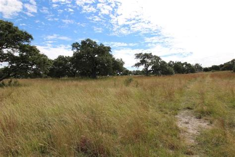 200 Acre Southern Comfort Ranch For Sale Picture Gallery