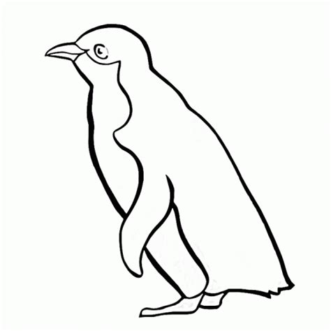 coloring page of a penguin penguins coloring pages to download and print for free