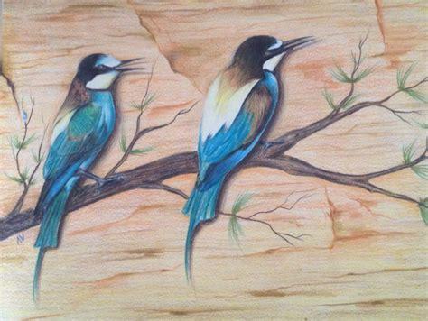 bird art drawing birds 1782212965 colour pencil drawing of a bird beautiful shading art