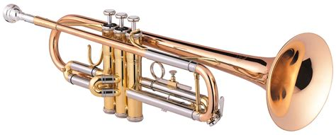 imagenes de trompetas musicales trompete 171 instrumente 171 musikschule landkreis altenburger