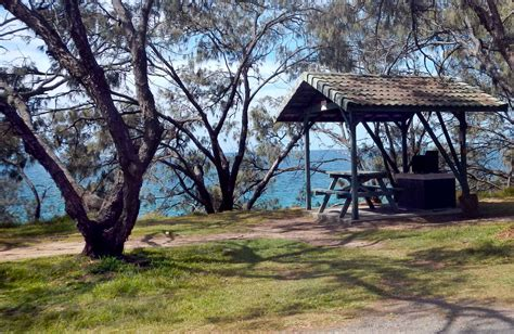 bay area park bay picnic area nsw national parks