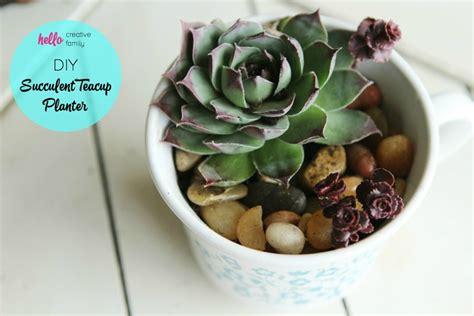 diy succulent teacup planter hello creative family