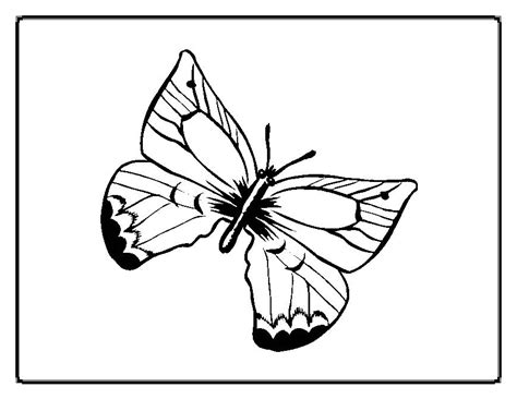 butterfly mask coloring pages free coloring pages of mask butterfly
