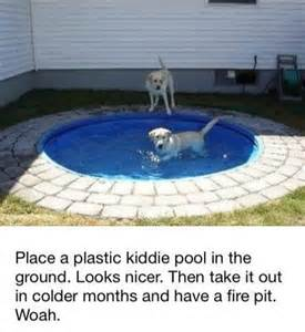 pool pit the winter for dogs and for the on pinterest