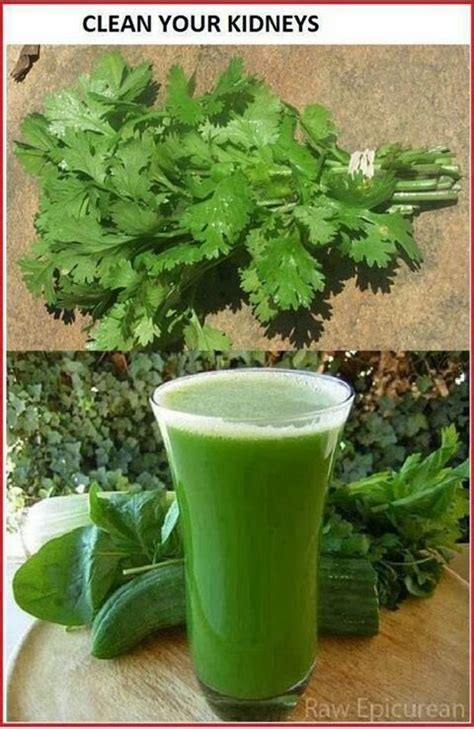 Cilantro Tea Detox by Parsley Or Cilantro Tea To Detox Kidneys Healthy Healthy