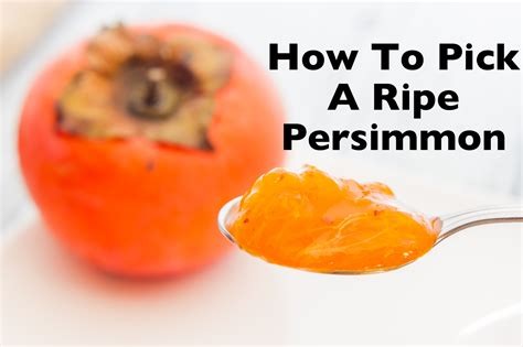 how to pick and eat a ripe persimmon high energy parenting