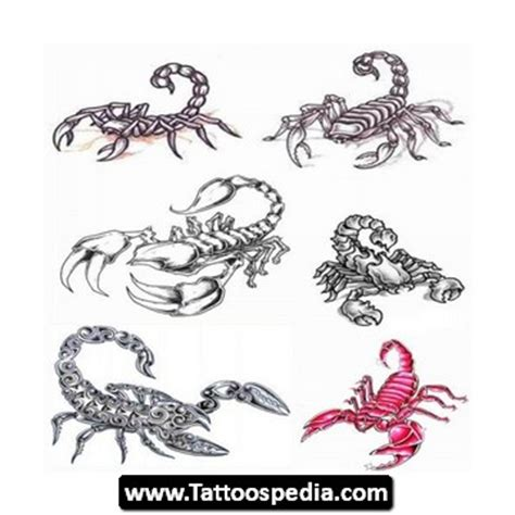 scorpio tattoo designs for girls scorpio designs for tattoospedia