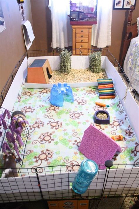 guinea pig bedding ideas rabbit cage ideas woodworking projects plans