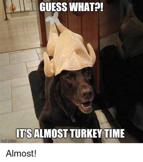 Its Time For A Of Guess Who Hollyscoop by 25 Best Memes About Turkey Time Turkey Time Memes