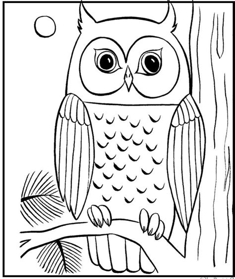 coloring pages of big owl 58 best cows images on pinterest kids net cows and coloring