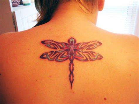 tribal dragonfly tattoo meaning ultimate collection of dragonfly tattoos 155 designs