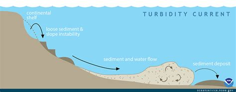 bed load definition what is a turbidity current