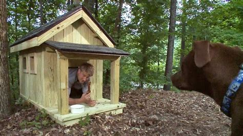 how to build a small dog house out of wood pete nelson builds the ultimate dog house treehouse masters youtube