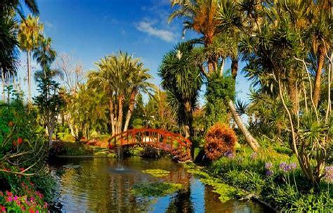 hotel jardin botanico puerto de la cruz jard 237 n del hotel bot 225 nico en tenerife actividades en familia