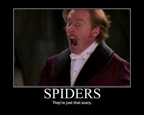 Afraid Of Spiders Meme - 26 best images about spiders on pinterest book challenge