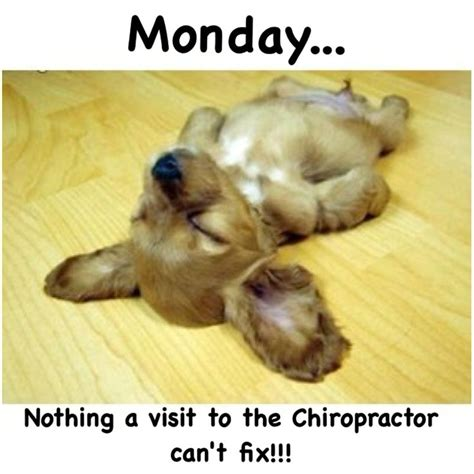 Funny Massage Meme - 112 best images about chiropractic memes on pinterest