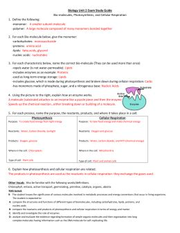 Cell Energy Cycle Gizmo Worksheet Answers