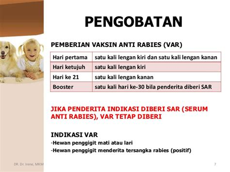 Serum Anti Rabies rabies