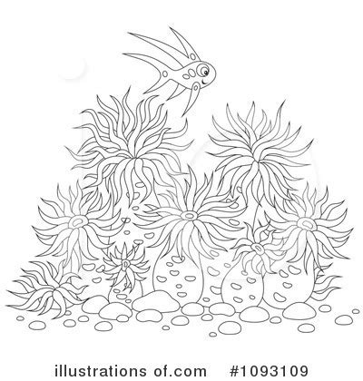 sea anemone coloring pages