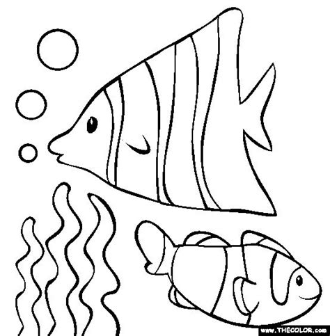 multiple fish coloring pages 111 best images about underwater window ideas on pinterest