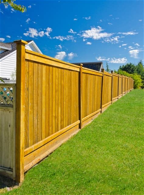 how to keep in yard without fence your yard more with or without a fence