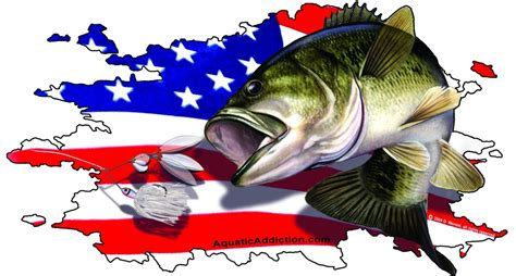 american bass fishing boats the gallery for gt bass boat decals
