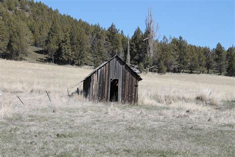 Shed Shack by Free Photo Shed Shack Rustic Building Free