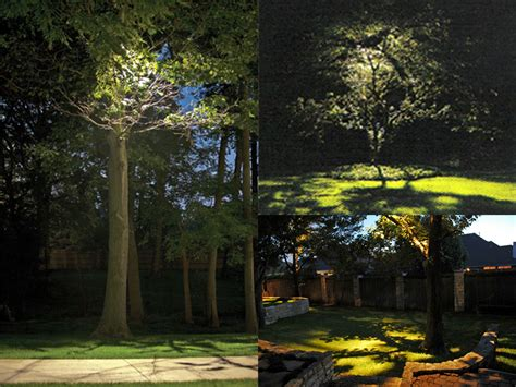 Garden Lighting Tips From National Lighting National Lights In Tree