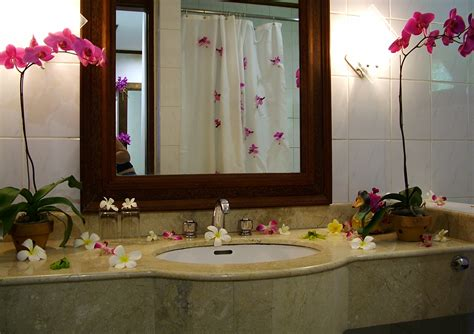 Decor Ideas For Bathrooms A More Creative Bathroom Simple Bathroom Decor Ideas