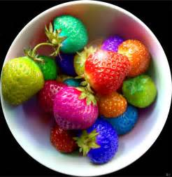 berry colorful colors food rainbow image 228341 on