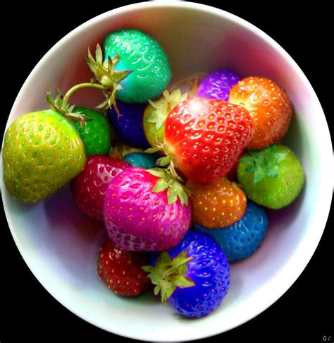 colorful food berry colorful colors food rainbow image 228341 on