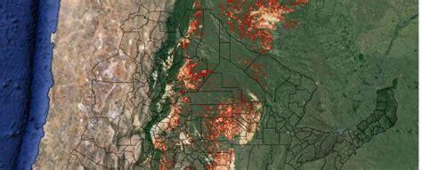 imagenes satelitales bosques crean una web con mapas actualizados sobre desmontes