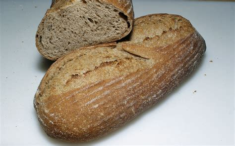 50 hydration dough fifty percent whole wheat sourdough new starter new try