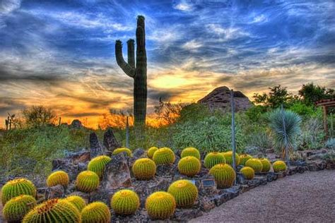 Arizona Botanical Gardens by Arizona Tourist Destinations