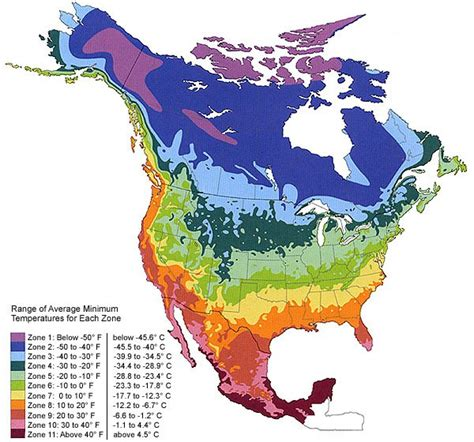 map of growing zones in america climate zone map usa the groblog