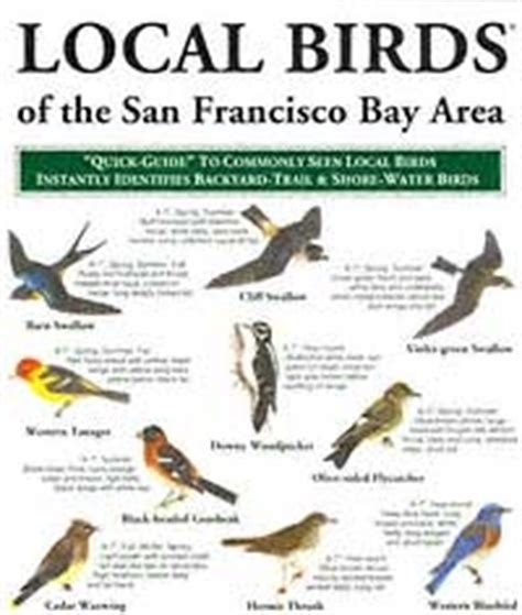 local birds of the san francisco bay area laminated fold