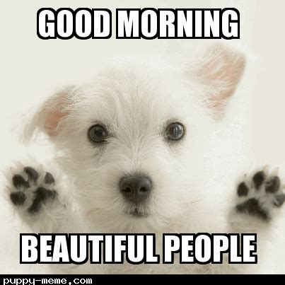 Cute Good Morning Meme - good morning