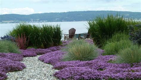 Making great landscape design and garden plots   Ideas for