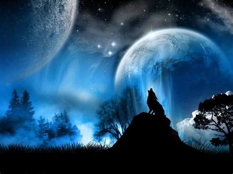 minicuentos de lobos y leyenda de un lobo aullando a la luna im 225 genes y fotos