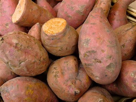 sweet potato farmville 2 wiki sweet potato nutrition facts and health benefits ariix